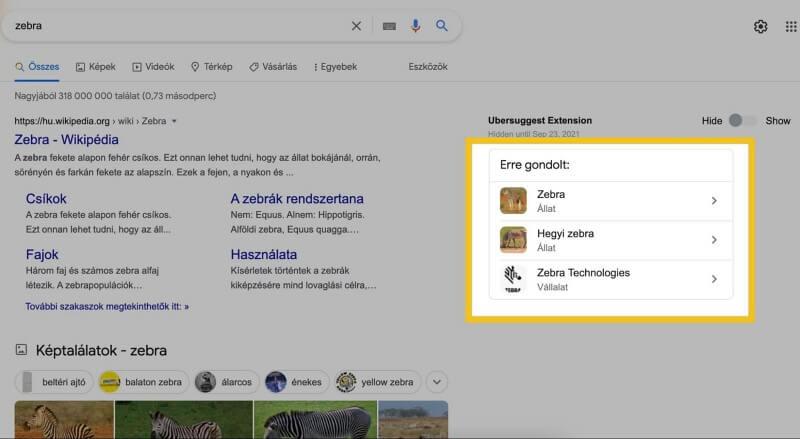 Google alternatív keresési szándék