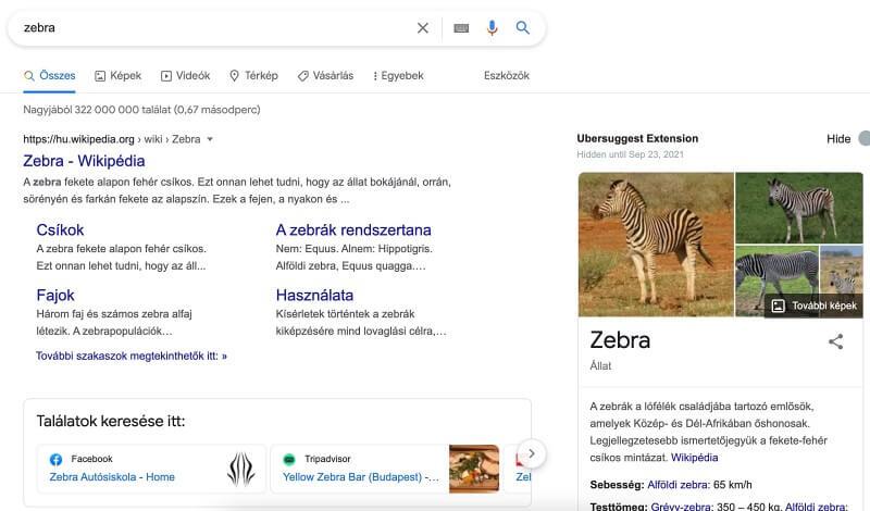 zebra keresési szándék